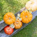 【ハロウィン】飾りは手作りでおしゃれに!ハロウィンディスプレイ!